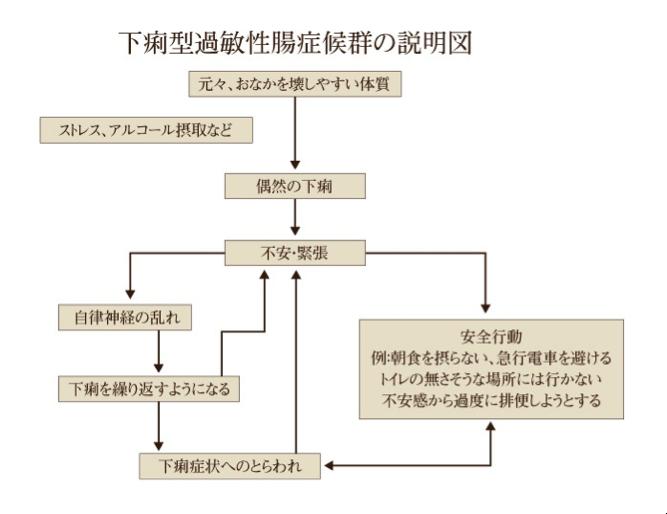 下痢型過敏性腸症候群の説明図